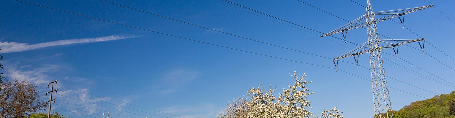 Stromtrasse durch Streuobstwiese. Foto: blickwinkel/A. Held