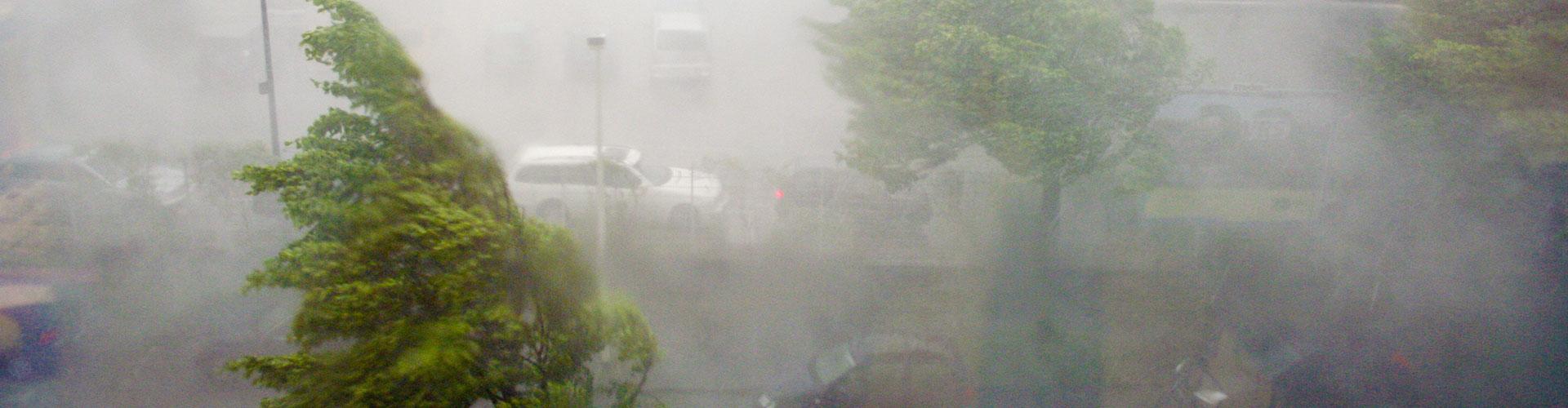 Gewittersturm. Foto: NABU/Helge May