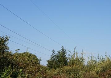 Stromleitungen durch das Ehinger Ried. Foto: BUND/Annette Reiber